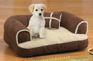 Pet Bed Couch