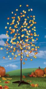 lighted-autumn-maple-branch-tree